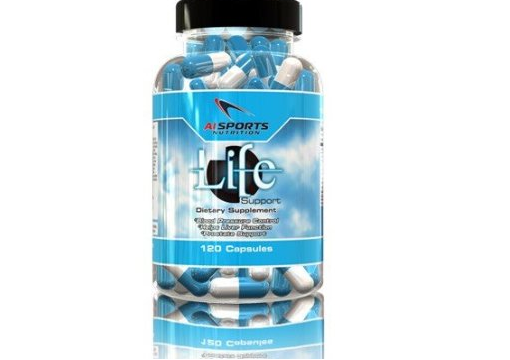 Life Support – AI Sports Nutrition Review