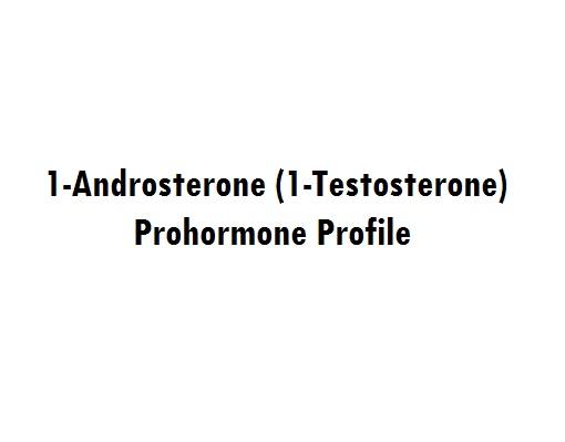 1-Androsterone (1-Testosterone) Prohormone Profile