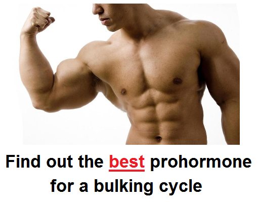 The best bulking prohormone for a winter cycle