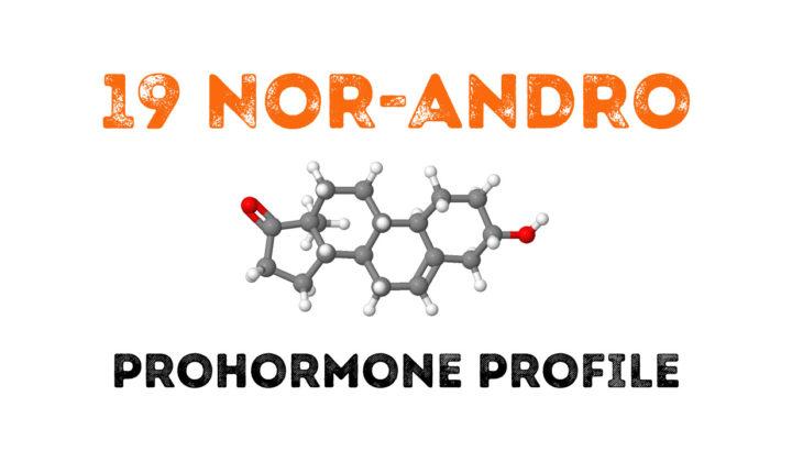 19-nor-DHEA (19 NorAndro) Prohormone Profile.