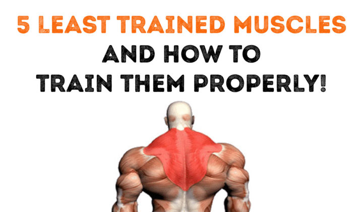 5 Least trained muscles and how to train them properly!