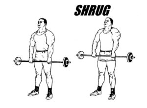 Shrugs with pronated grip