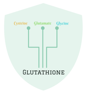 Increase production of Glutathione